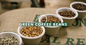 What are Green Coffee Beans?